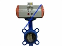 Picture of ACTUATOR WITH BUTTERFLY VALVE